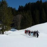 Iglu-Übernachtung in Jungholz (Allgäu/Tirol) alternativ mit Schneeschuhtour